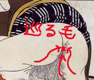 毛が巡っているタイプのコピー.jpg